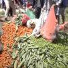 कोरोना महामारीले भक्तपुरका किसानको लाखौँको तरकारी नष्ट